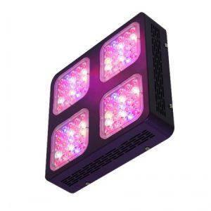 Sijalke LED